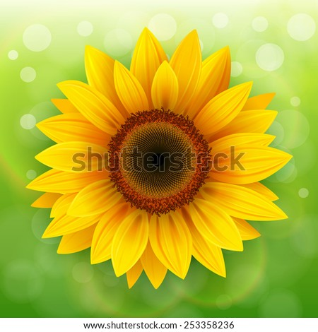 Nature Background with sunflower over green bokeh background. - stock vector