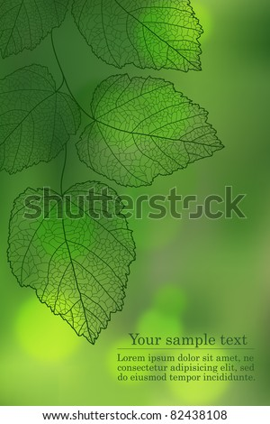 Nature background with your text (vector eps 10) - stock vector