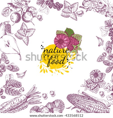 Nature food vector poster. Vintage frame with fruit, vegetables in vintage style. Sketch background. - stock vector
