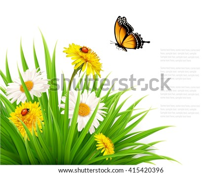 Nature summer background with daisy flower with butterfly. Vector illustration. - stock vector