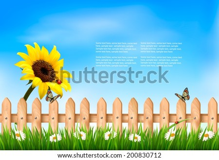 Nature summer background with sunflower flower and wooden fence. Vector illustration.  - stock vector
