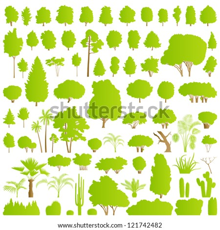 Nature tree, bush, scrub, palm and cactus plants detailed forest silhouettes illustration collection background vector - stock vector