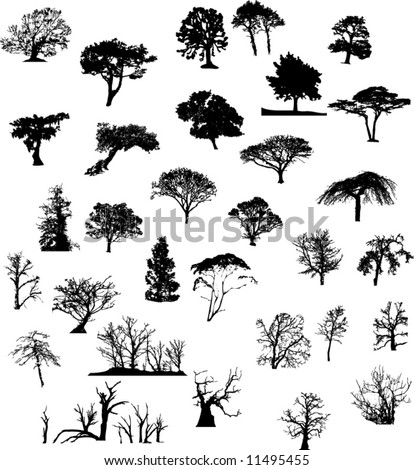 Nature tree silhouettes set