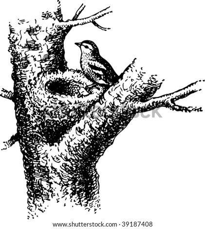 Nest - stock vector