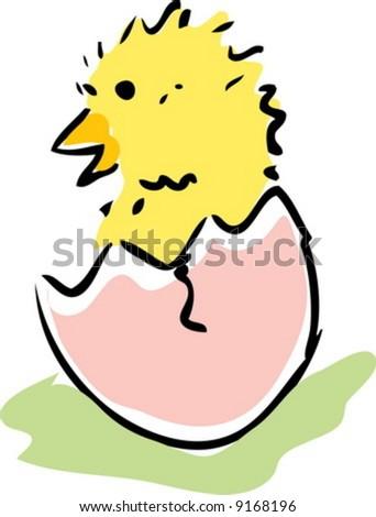 New baby chick emerging from broken egg illustration - stock vector