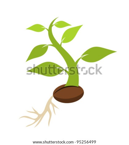 New born plant growing from seed. Vector illustration - stock vector