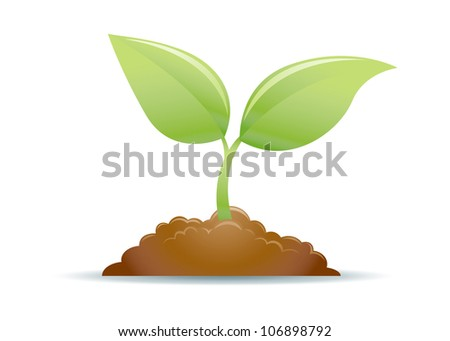 New Growth Plant Illustration - stock vector