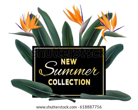 New Summer Collection sale vector poster. Golden text on black fame and strelitzia reginae exotic jungle leaves and flowers illustration. Stylish banner with exotic tropical plant - bird of paradise.