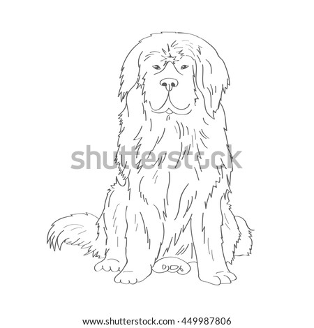 Pictures Realistic Dog Coloring Pages 12 In Gallery Ideas With