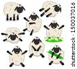 Nice set of cartoon sheeps  - stock vector