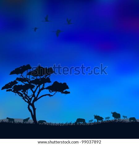 Night in Savannah - stock vector