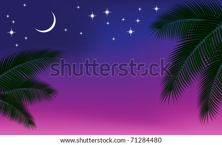 Night sky and a palm branch. Vector illustration.