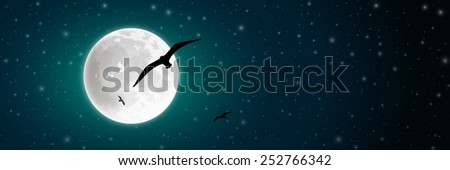 Night Sky with Moon and Bird Silhouette. Vector EPS 10. - stock vector
