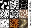 Nine different animal textures cows,zebras,girafe,tiger,snow leopard - stock vector