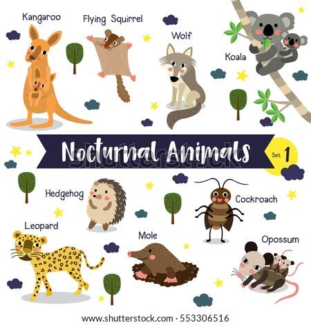 Cute Zoo Alphabet Vector Y Letter 361685165 on Vector Desert Worksheets For Preschool