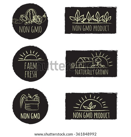 Non gmo and other healthy food press collection. - stock vector