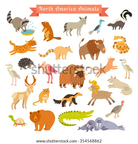 North America animals vector illustration. North America animals for children and kids.  North America mammals. Animals cartoon style. Big vector set.Isolated on white. Preschool,baby travelling,drawn - stock vector