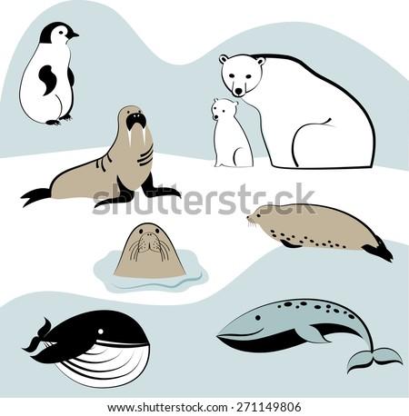 North marine animals. Silhouette of animals - stock vector