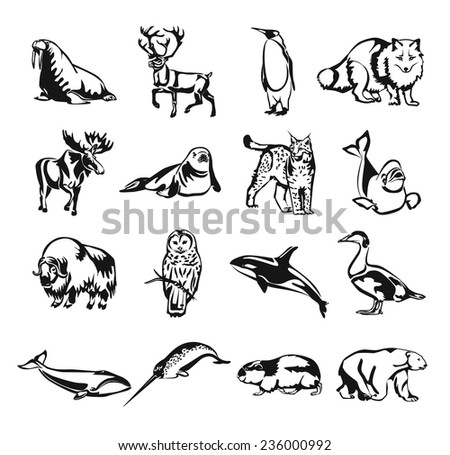 Northern animals vector black doodle outline pictogram icon set - stock vector