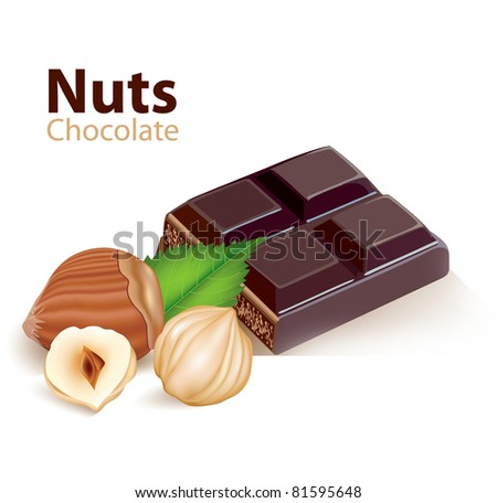 Nuts and chocolate - stock vector