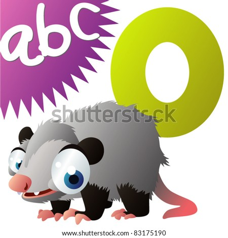 O is for Opossum - stock vector