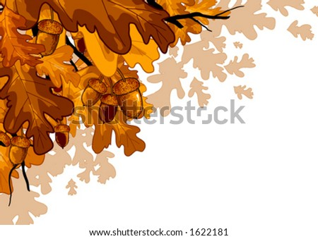 Oak leaves and acorns - stock vector