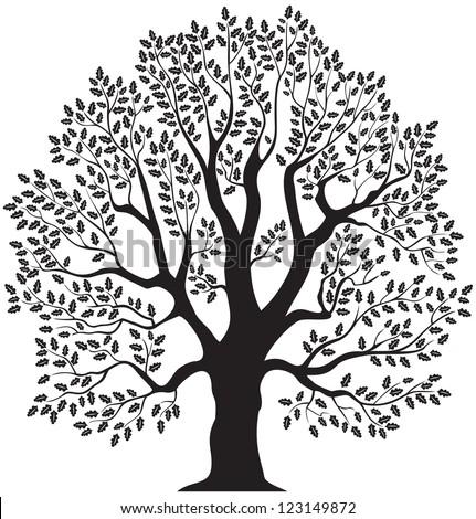Oak Stock Ph... Oak Tree Symbolism Marriage