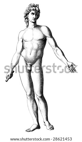 Old-time engraving of the David - stock vector