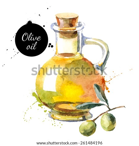 Olive bottle vector illustration. Hand drawn watercolor painting on white background - stock vector