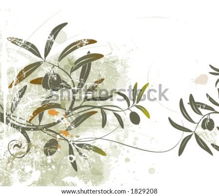 Olive branch. - stock vector