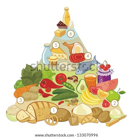 Omnivore nutrition pyramid with numbered food groups - stock vector