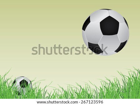 one small soccer ball and the other larger and grass in the front - stock vector
