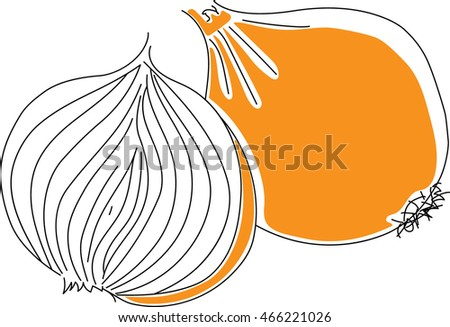 onion vector isolated