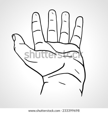 Open empty line art drawing hand isolated on white background close up of human hand