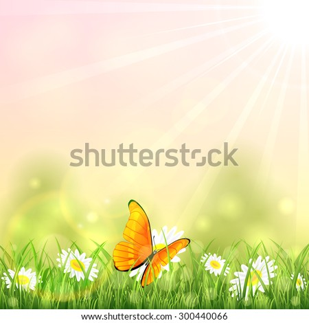 Orange butterfly and white flowers on sunny background, illustration. - stock vector