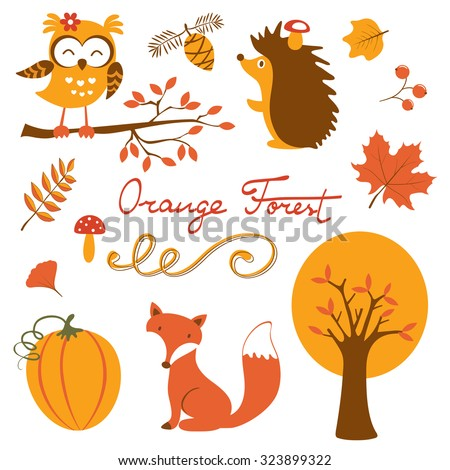 Orange forest colurful collection. Illustration in vector format - stock vector