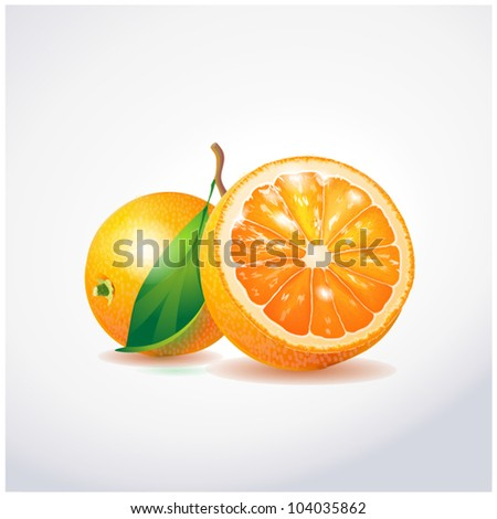 Orange fruit - stock vector