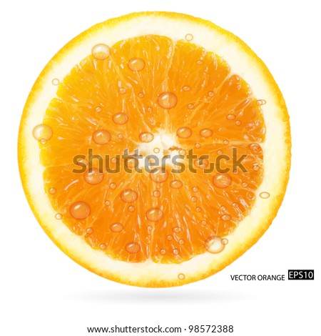 Orange fruit with water drops isolated on white background. Vector illustration.
