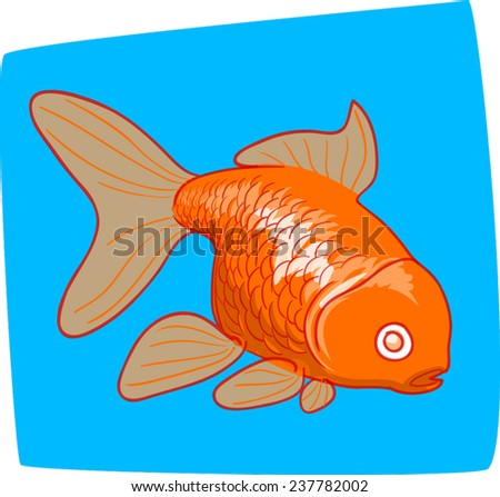 Orange goldfish/koi carp on a blue background.