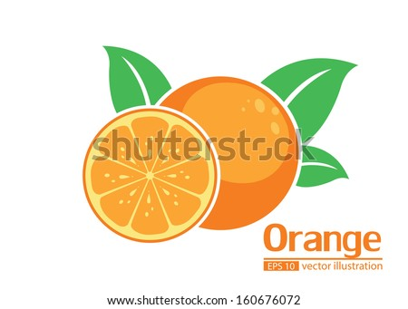orange illustrator vector