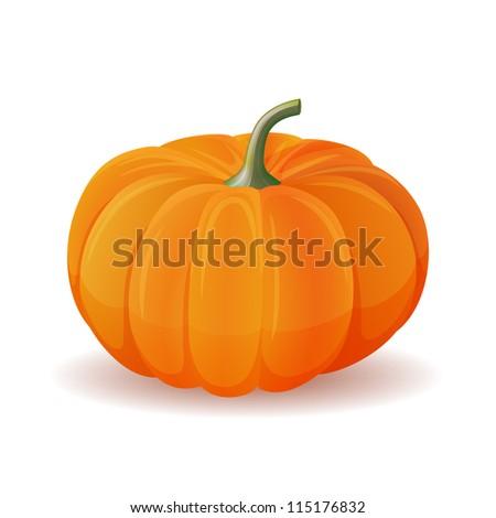 Orange pumpkin isolate  on white. Realistic vector illustration. - stock vector