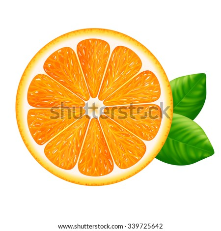 Orange slice with leaves isolated on white background. Vector illustration for decorative poster, emblem natural product, farmers market. Perfect for packaging design of cosmetics and food. - stock vector