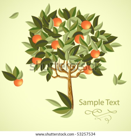 orange tree - stock vector