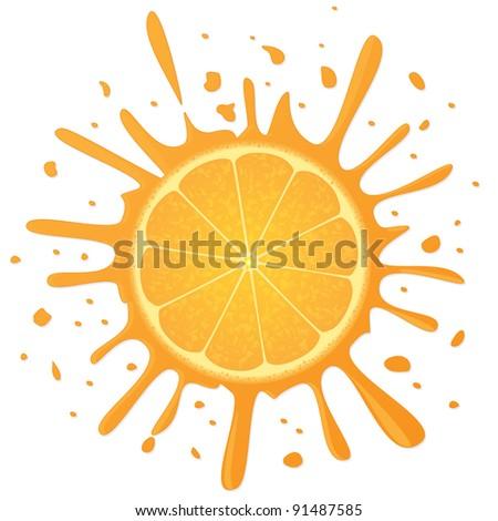 Orange. Vector illustration. - stock vector