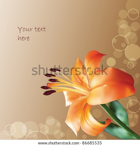 orange vector lilly on abstract background - stock vector