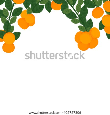 Orange with leaves and branches - stock vector