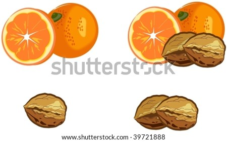 oranges and walnuts - stock vector