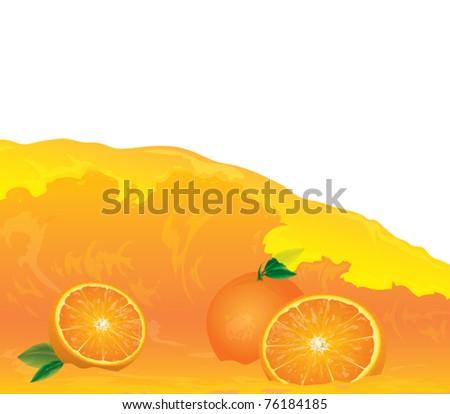 oranges in juice illustration - stock vector
