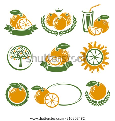Oranges labels and elements set. Vector - stock vector