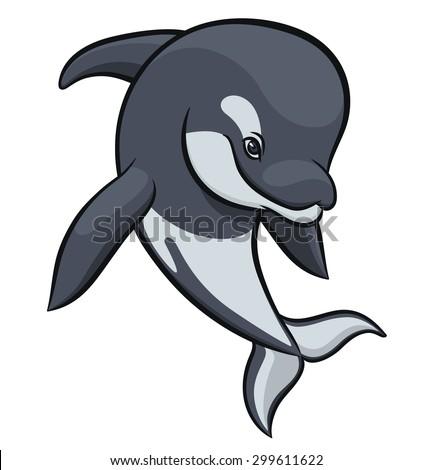 orca or killer whale - vector illustration - stock vector